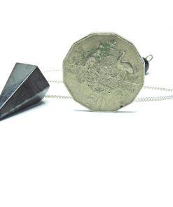 Facetted Shungite Pendulum